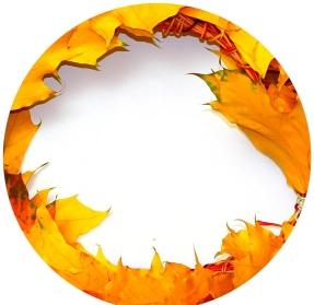 autumn-wreath-circle-frame-182408.jpg